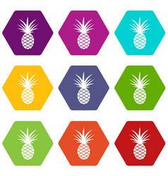 pineapple icon set color hexahedron vector image
