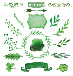 watercolor green decor branches floral set vector image vector image