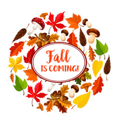 autumn or leaf fall seasonal poster vector image vector image