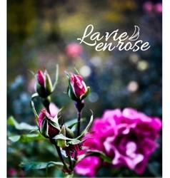 rose garden realistic background vector image vector image