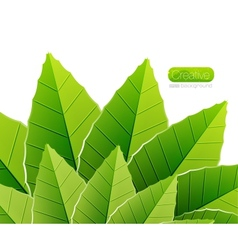 Green leaves nature background vector
