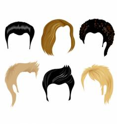 Hairstyling vector