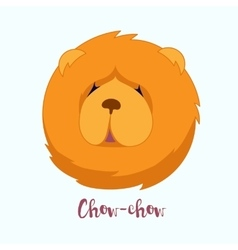 dog Chow-chow vector image vector image