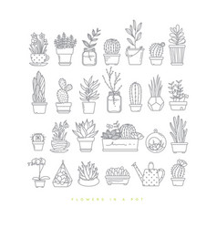 Icon plants in pots vector