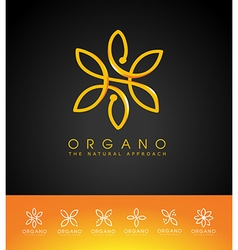 Organic leaves logo vector