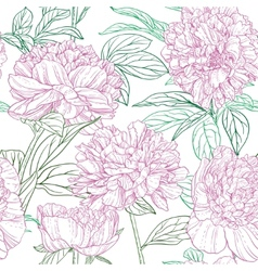 Seamless pattern of pink peonies graphics vector image vector image