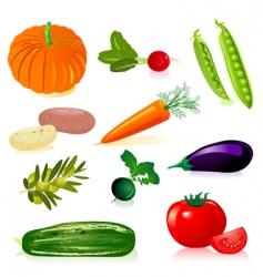set vegetables vector image vector image