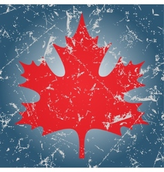 Red maple leaf and ice vector