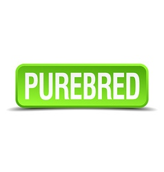 Purebred green 3d realistic square isolated button vector