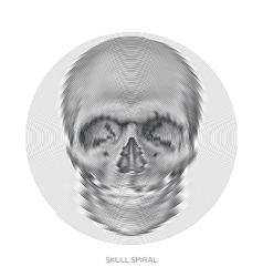 Skull design element vector