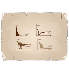Animal cartoon of fat tailed and long tailed distr vector