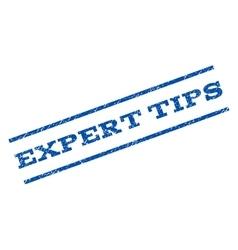 Expert tips watermark stamp vector