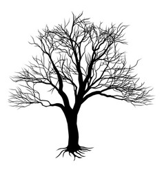 Bare tree silhouette vector
