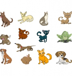cute pets vector image vector image