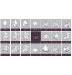 set of labels or tags with different types of tea vector image vector image