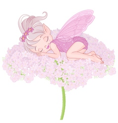 Sleeping pixy fairy vector
