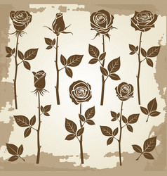 vintage grunge rose silhouettes vector image