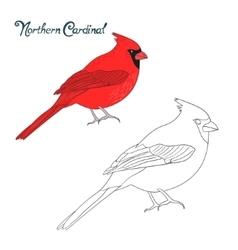 Educational game coloring book cardinal bird vector image