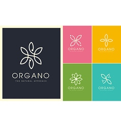 Organic beauty cosmetic leaves logo vector