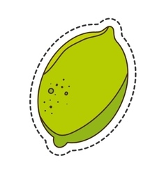 Fresh fruit cut line isolated icon vector