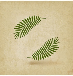 Two green palm leaves on old background vector