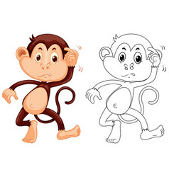 animal outline for little monkey vector image vector image