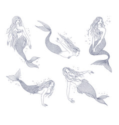 Mermaid in various postures hand drawn contour vector