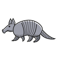 Gray armadillo animal vector