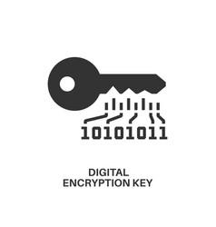 Digital encryption key icon vector
