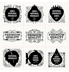 Natural products and frames collection vector image