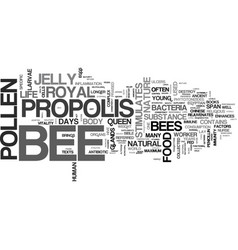 Bee supplements for your health text word cloud vector