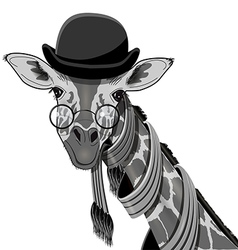 Giraffe in bowler hat vector