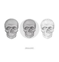 skull set design element vector image
