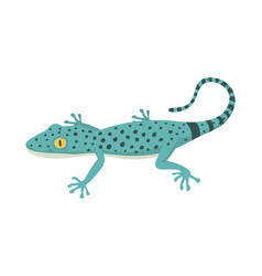 Blue lizard reptile isolated vector