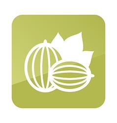 Gooseberry outline icon berry fruit vector