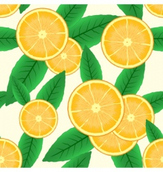 abstract background with citrus fruit vector image vector image