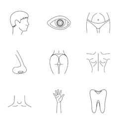 Body icons set outline style vector