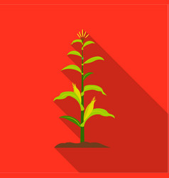 Corn icon flat single plant icon from the big vector