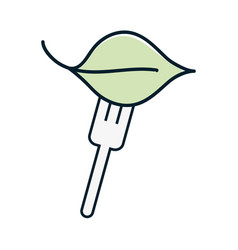 Fresh leaf to prepair natural salad vector
