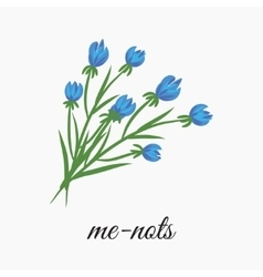 Wild flowers forget me not vector