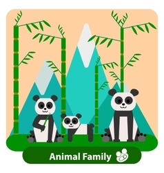 Family panda on the background of bamboo and vector