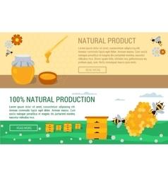 Horizontal banners honey natural production vector image