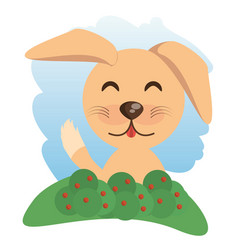 Cute dog animal winking vector
