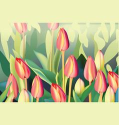 red tulip flowers spring season invitation vector image vector image