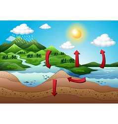 The water cycle vector image vector image