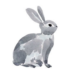 Watercolor of a rabbit vector