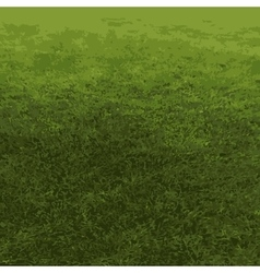 Auto traced background nature grass vector