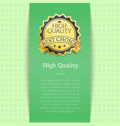 high quality award best choice banner text vector image