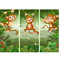 set of three monkeys in the forest vector image