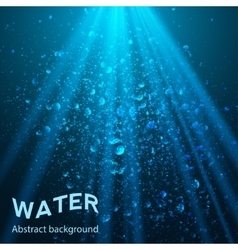 Underwater part background vector